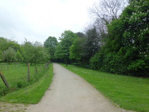 aanpalend stadspark Hof De Jonghe